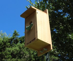 Bluebird Birdhouse Plans - Complete Step-By-Step Instructions for ...