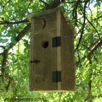Outhoouse Birdhouse