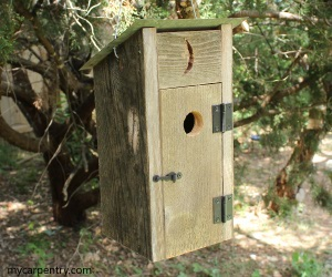 Outhouse birdhouse birdhouse plans that resembles a for Types of birdhouses