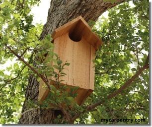 Owl House Plans Free Bird House Plans