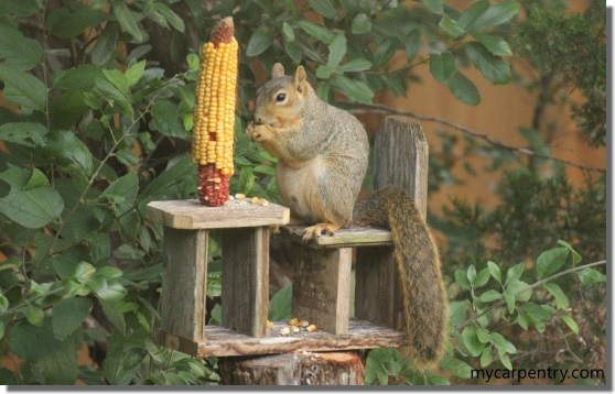 Wondrous Squirrel Feeder Plans How To Make A Squirrel Feeder Short Links Chair Design For Home Short Linksinfo