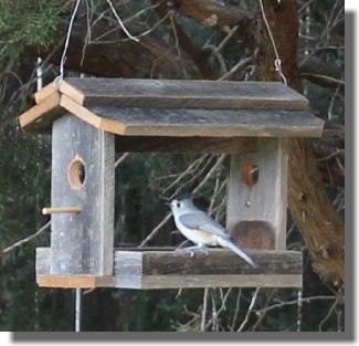 how to make a wooden bird feeder