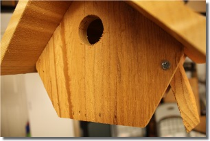 awesome wren bird house plans pictures - 3d house designs - veerle