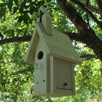 Build a Birdhouse Easy to Build Bird House Plans